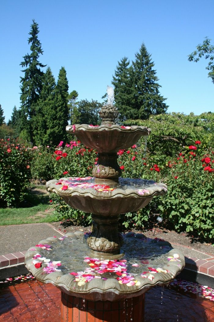 Garden water fountain rose petals aristocratic