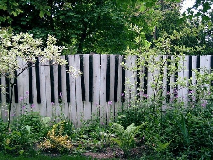 Fence-privacy-A-flashy-decision