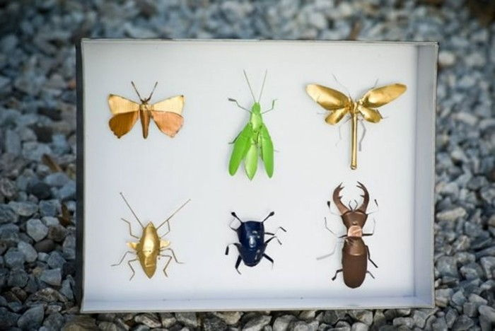 schmuck-of-coffee-capsules themselves-are-different-insect-yourself-make