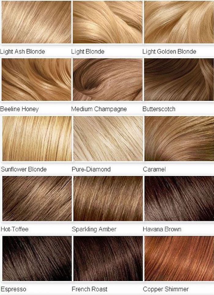 which hair color is mine, color palette with blond and brown nuances
