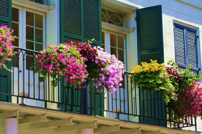 balcony-flowers-colorful-colored