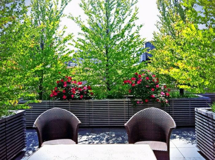 balcony-flowers-super-exotic-ambiente-very-nice