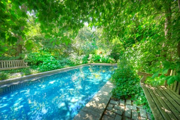 garden-pool-green-environment-pure-water
