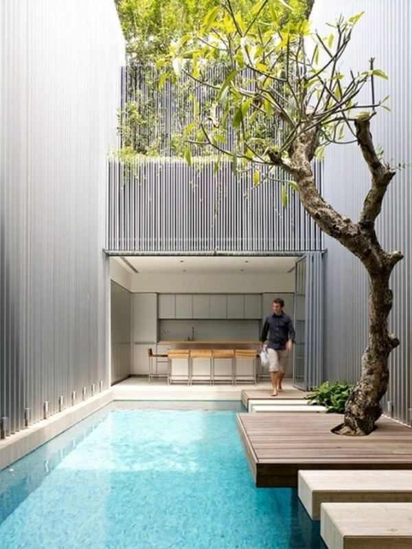 garden-pool-modern-beautiful-archirektur-tree-by-the-pool