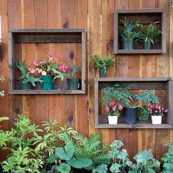 wooden partition walls garden shelves many plants