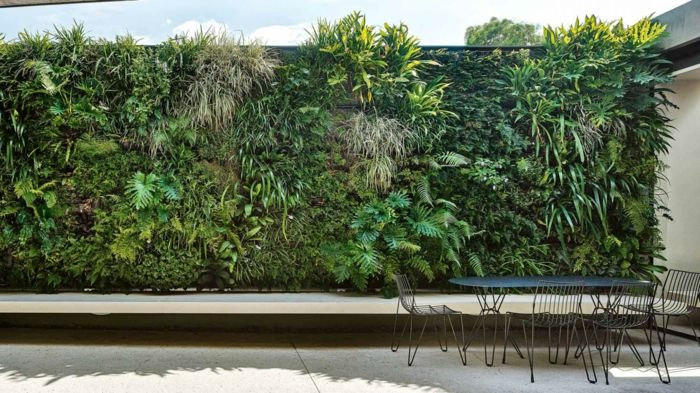 a green wall on the terrace gives the shade and harmonizes with the furniture