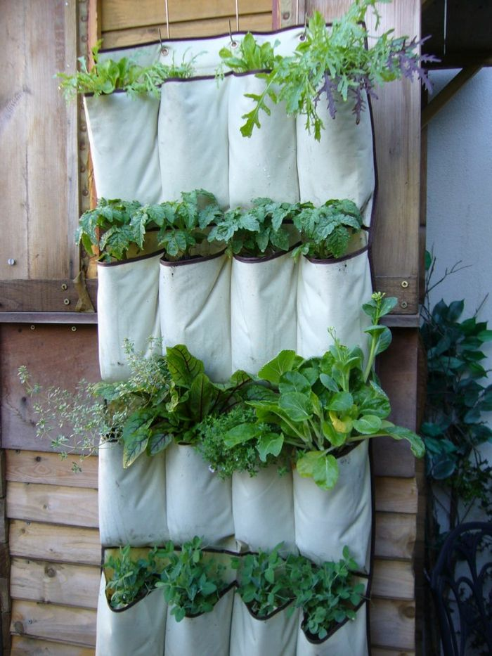 the end product of the guide - a vertical garden to make your own
