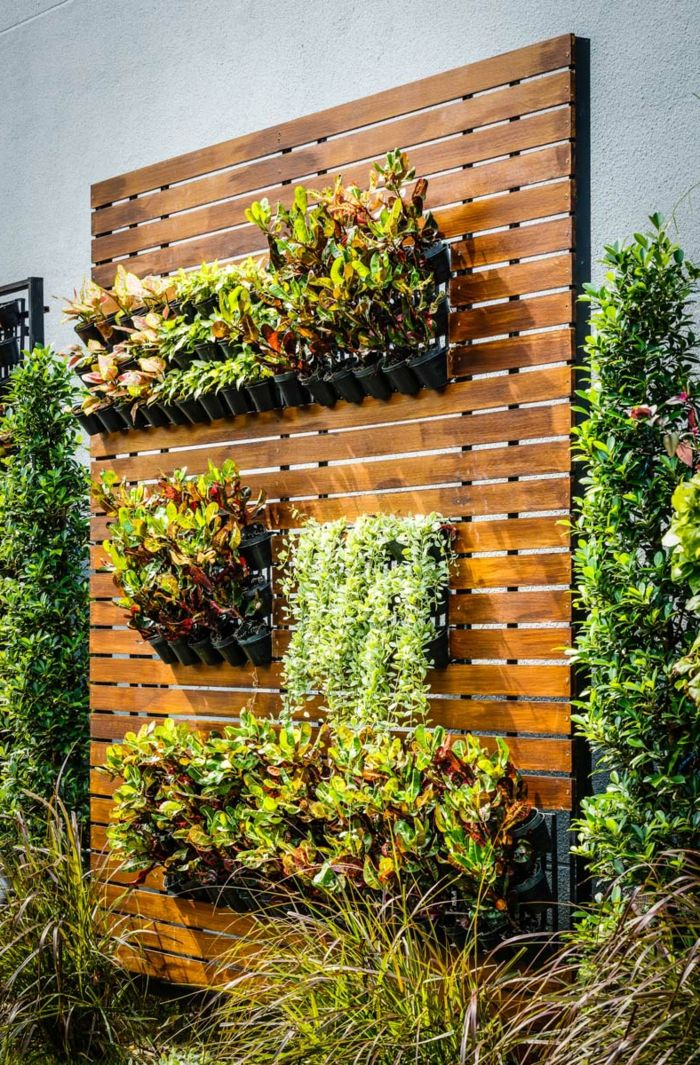 a green wall planted on wood - such a beautiful vertical garden