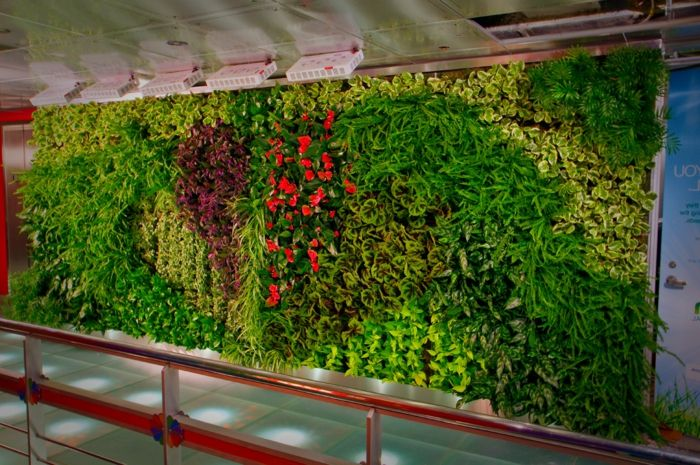 beautiful vertical garden with flowers in red color and many green leaves
