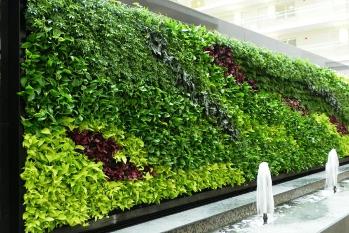 green wall with a fountain in front of it - vertical garden