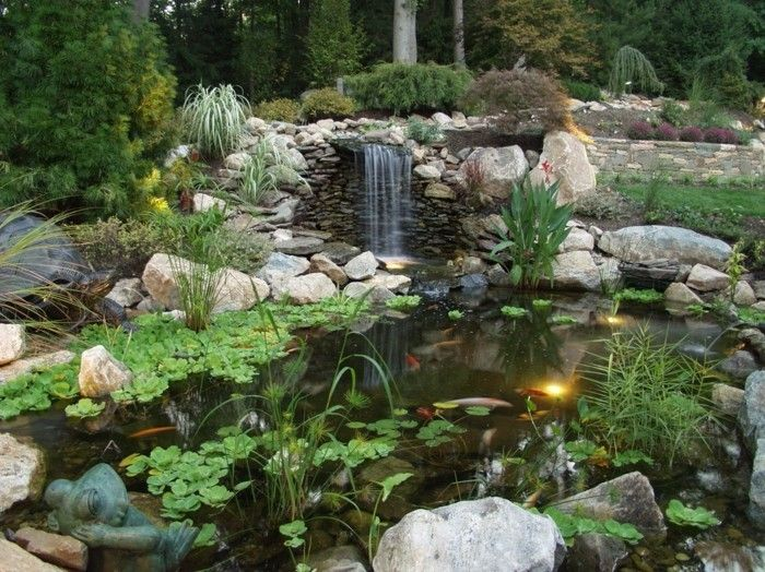 pond-plant-a-nice-pond-with-waterfall
