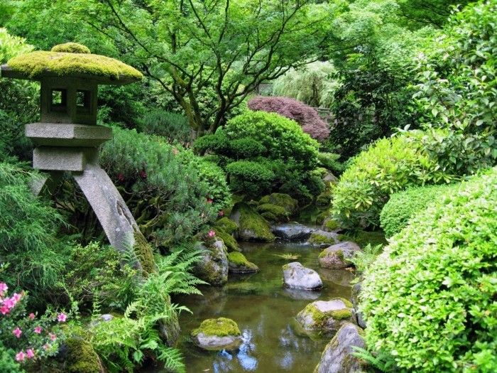 pond-plant-here-is-not-a-gorgeous-looking-garden-pond