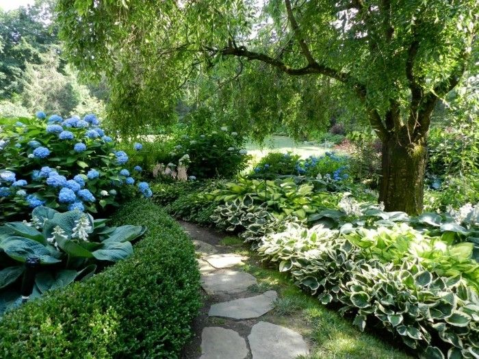pond-plant-yet-a-great-idea-for-garden design-with-pond