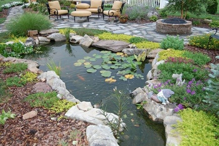 pond-plant-wonderful-plant-to-the-pond