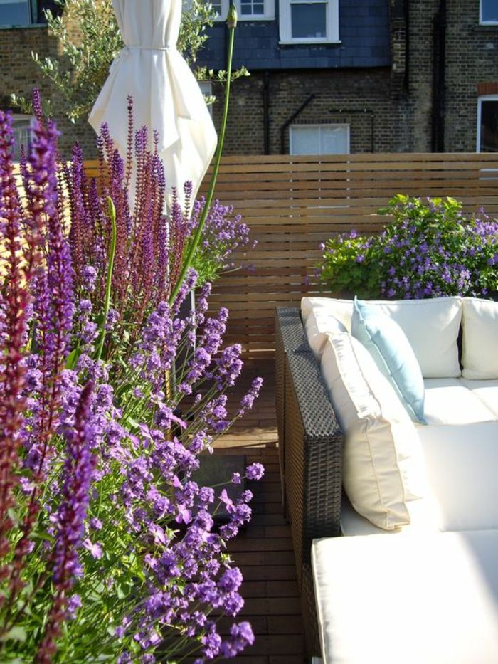 terrace design ideas sofa made of rattan white deco pillow soft comfortable lavender flowers purple