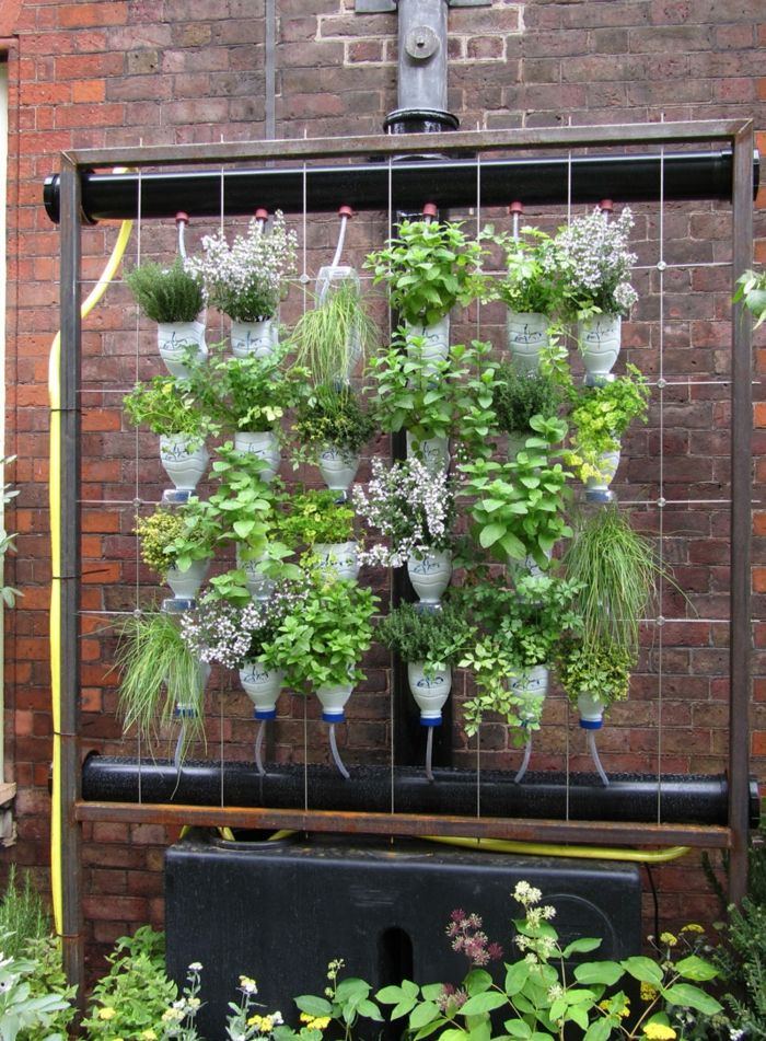 Build your own plant wall - how to easily irrigate everything with bottles
