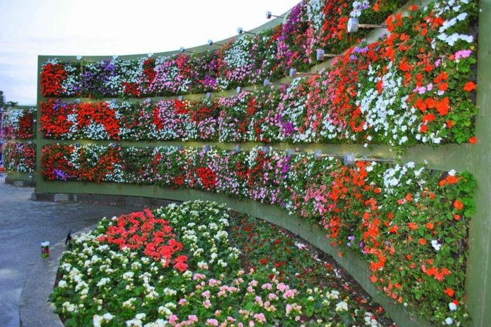 vertical garden with many different types of flowers on rounded wall