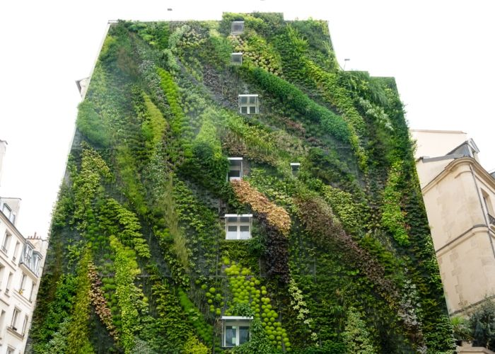 the whole apartment block is a vertical garden in nuances of green