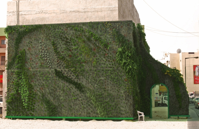 even the old wall can be embellished with a vertical garden