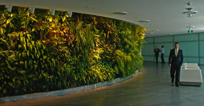 vertical plants - a walk like in nature in the office