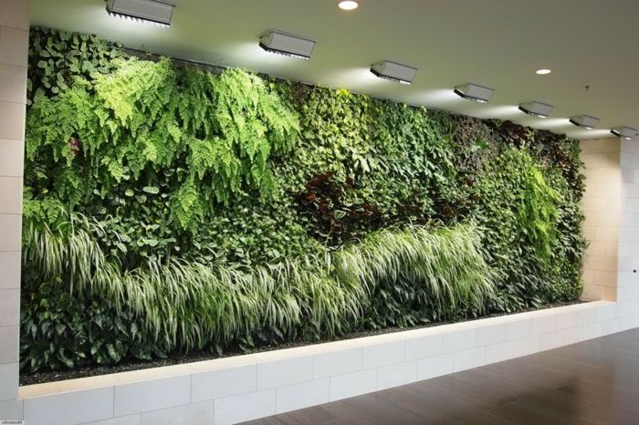 vertical greening in a hall full of green plants of many species