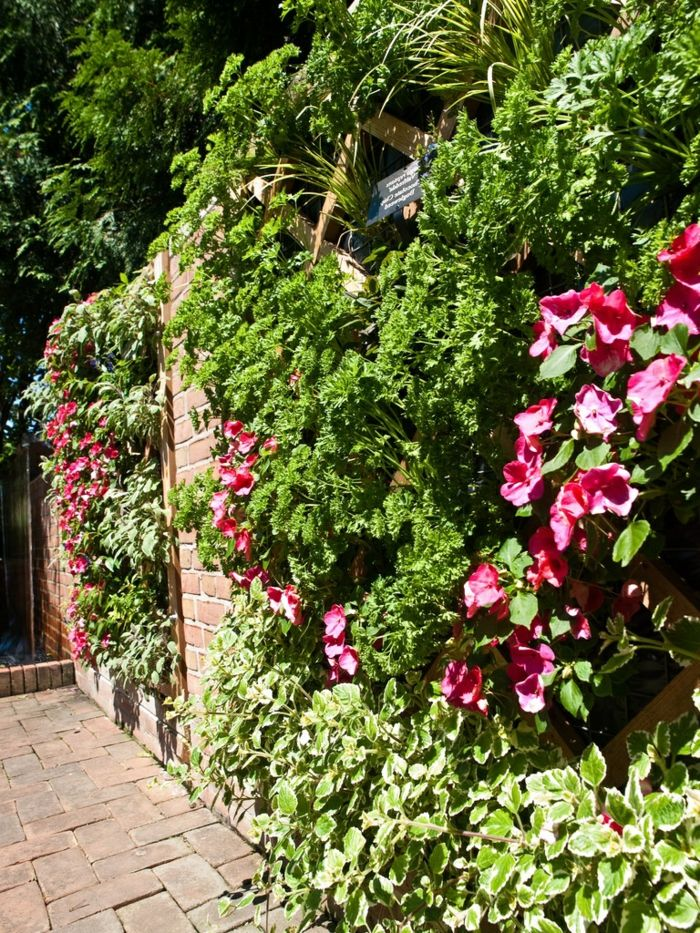 pink flowers with large flowers - build a planting wall yourself