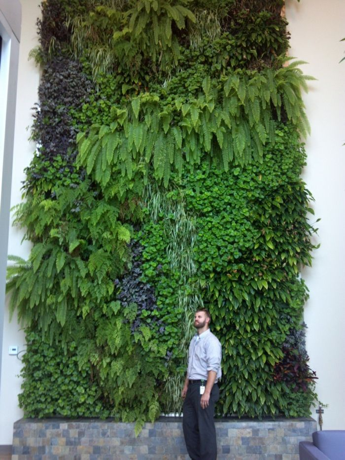 High ceiling with vertical planting - exotic and decorative plants