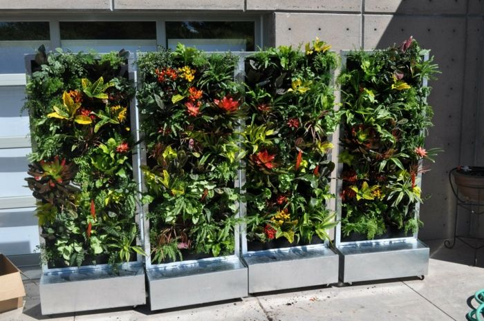 four parts of vertical garden with flowers in red and yellow color