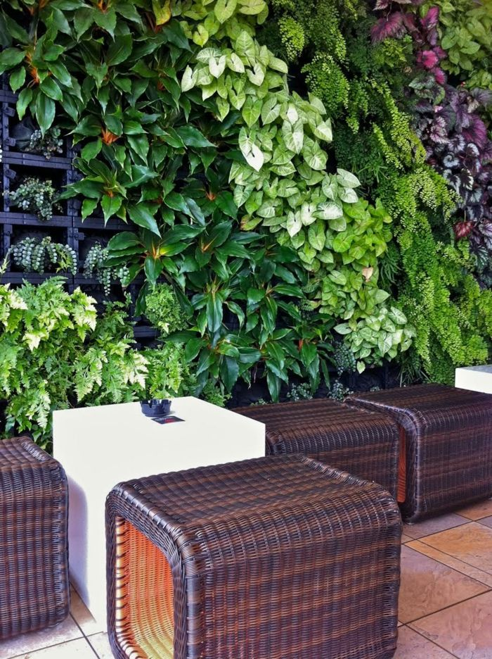 a cafe where there is a vertical garden in green and purple color